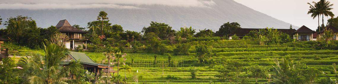 bali-riziere-sidemen-indonesie