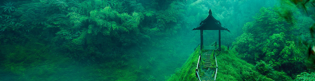 cascade forêt jungle laos