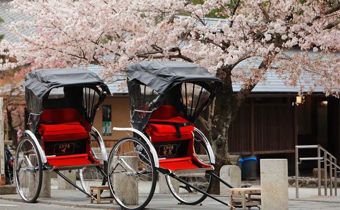 Découvrez nos autotours pour un circuit au Japon