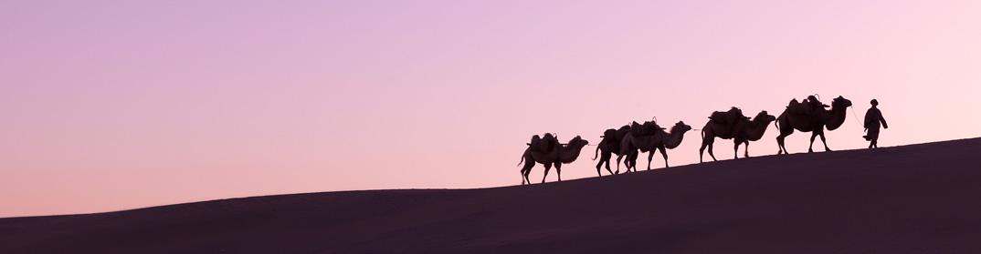 Caravane route de la soie