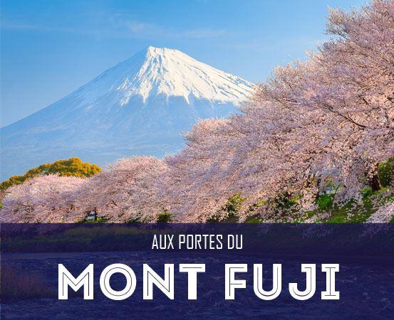 Mont Fuji et sakura