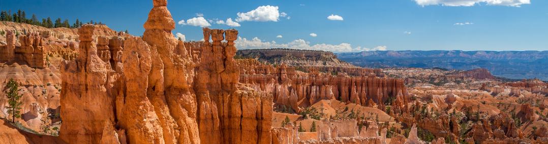 bryce canyon paysage