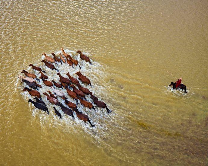 Traversé de rivière par les cheveaux de Mongolie
