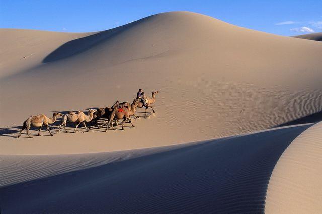 Circuit Au cœur des steppes mongoles - 1