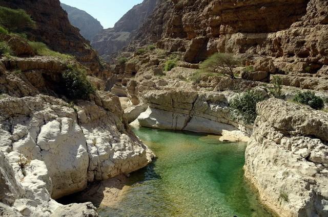 Oman - Circuit Privé Oman Buissonnier (cat. sup.)