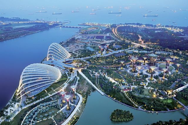 a-singapour-gardens-by-the-bay-arbres-artificiels-2-go