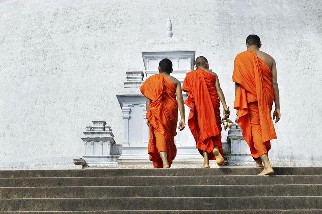 Circuit Privé Ceylan en liberté + séjour Negombo 3*sup - Sri Lanka