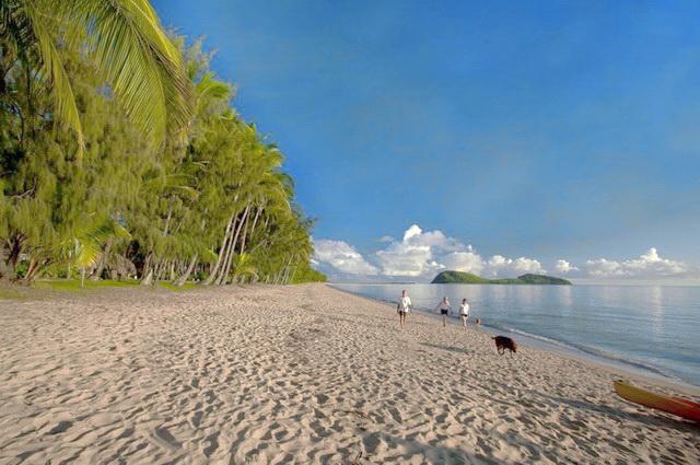 Odyssée Australienne + Palm Cove