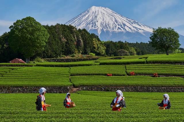Circuit Japon Essentiel et Extension Mont Fuji - 1