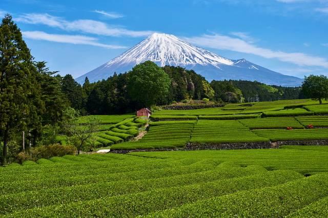 Circuit Japon Essentie et Extension Mont Fuji et Tokyo - 1
