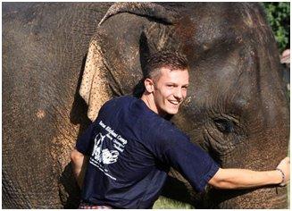 Expérience authentique d'une journée : participer à un programme de soins des éléphants