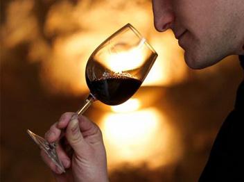 gegustation-de-vin-etvisites-vinicole-en-touraine