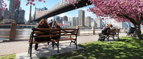 excursion-guidee-brooklyn-bronx-queens-avec-transport