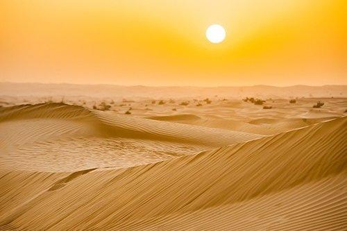 dubai-excursion-matinale-en-4x4-dans-les-dunes-pick-up