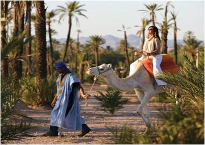 marrakech-balade-a-dos-de-chameau