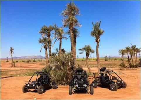 tour-en-buggy-dans-palmeraie-marrakech