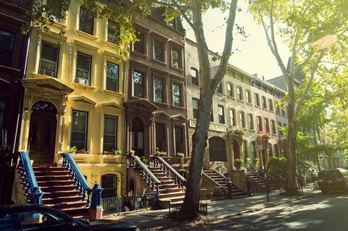 Visite de Harlem