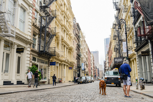 Visite guidée de Soho, Greenwich Village et Meatpacking District  en privé avec un guide français