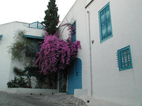 Village de Sidi Bou Said*