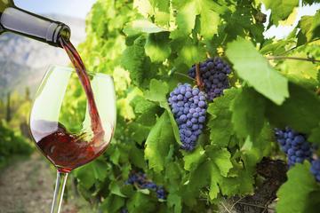 Excursion privé à Oia au coucher du soleil - Avec dégustation de vin
