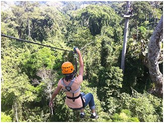 Décente en tyrolienne au-dessus d'une vraie forêt tropicale thaïlandaise