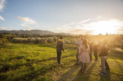 Pise : excursion vers San Gimignano, Sienne et Chianti