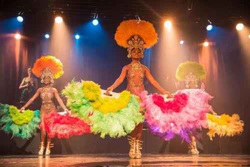 excursion-de-trois-heures-au-spectacle-ginga-tropical