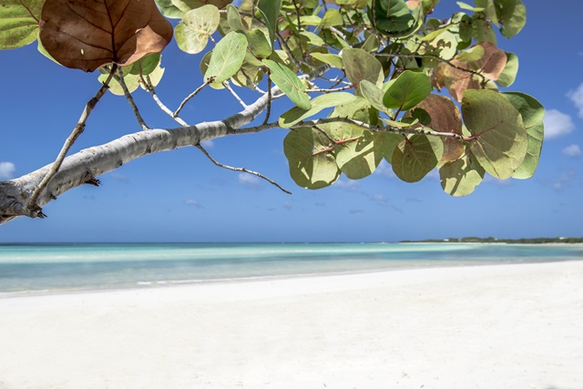 melia-jardinesdelrey-playa-9627