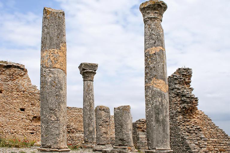 Circuit découverte de la tunisie hôtel el mouradi palace 4*sup