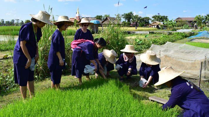 Groupe CFA Voyages en Thailande