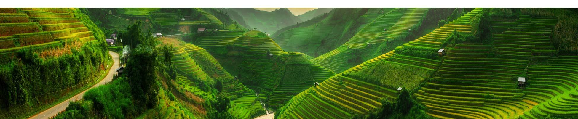 riziere-sapa-vietnam-treks