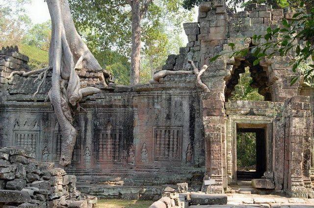 a-cambodge-angkor-preah-khan-porte-temple-et-fromager-2-go