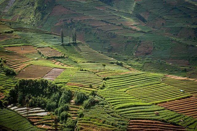 a-indonesie-java-plateau-de-dieng-2-go