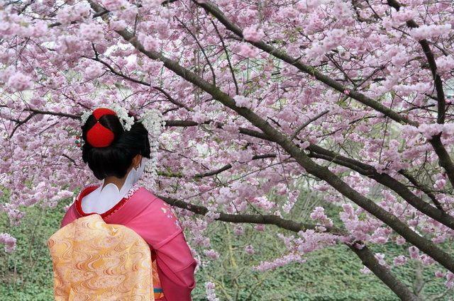a-japon-kyoto-geisha-kimono-5-go