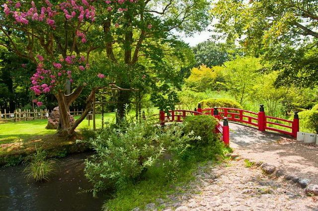 a-japon-nara-jardin-go