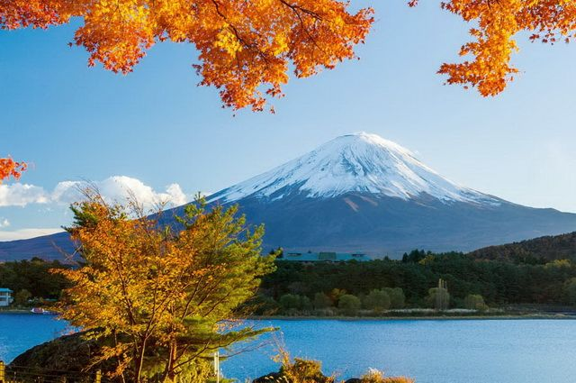 Samourais et Jardins zen - Japon