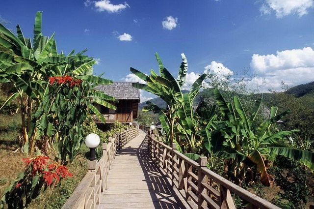 a-laos-hotel-luangsay-lodge-passerelle-2