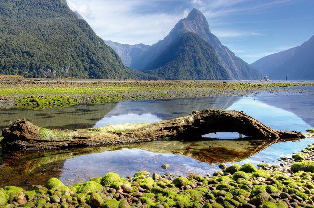 Circuit Fjords et Maoris