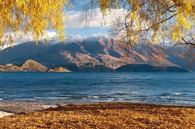 Photo n° 10 Flânerie néo-zélandaise (autotour) - Nouvelle Zélande