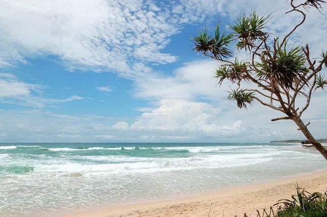 Photo n° 15 Ceylan Essentiel - Sri Lanka