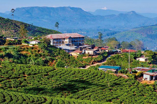 Photo n° 1 Ceylan Essentiel - Sri Lanka