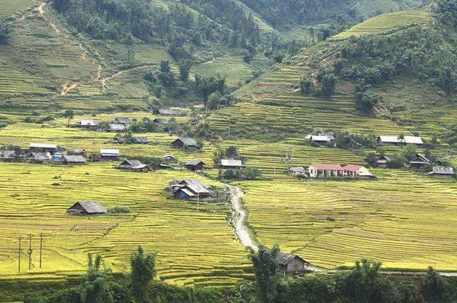a-vietnam-sapa-rizieres-en-terrasses-1-go