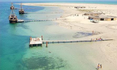 R volution et politique tunisie page 175 actualit discussions forum - Office de tourisme djerba ...